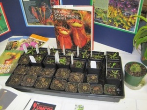UMCPS freebie plants at the Mn Arbo Show 2012
